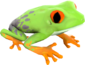 Painted Croaking Hazard E6E6E6.png