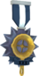 Painted Tournament Medal - Ready Steady Pan 28394D Ready Steady Pan Helper Season 3.png