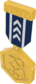 Painted Tournament Medal - TF2Connexion 18233D.png