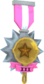 Painted Tournament Medal - Ready Steady Pan FF69B4 Pantastic Playoff Champ.png