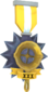 Painted Tournament Medal - Ready Steady Pan E7B53B Ready Steady Pan Helper Season 3.png