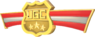 RED Tournament Medal - UGC 4vs4 Winged Medal Gold.png
