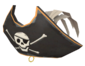 Painted Buccaneer's Bicorne A89A8C.png