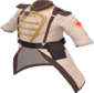Painted Colonel's Coat 654740.png
