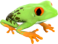 Painted Croaking Hazard 808000.png