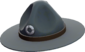 Painted Sergeant's Drill Hat 384248.png