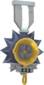 Painted Tournament Medal - Ready Steady Pan 7E7E7E Ready Steady Pan Helper Season 3.png