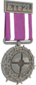 Painted Tournament Medal - ETF2L 6v6 7D4071 Participant.png