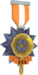 Painted Tournament Medal - Ready Steady Pan CF7336 Ready Steady Pan Helper Season 3.png