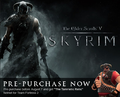 Skyrim Steam Promo.png